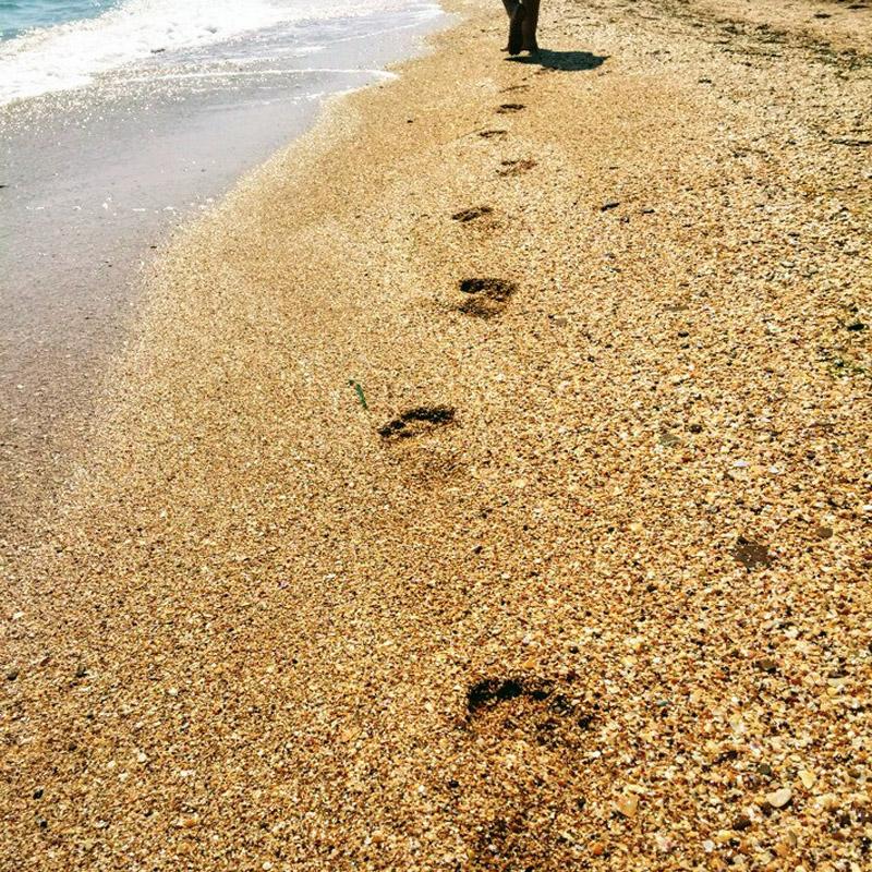 отдых на азовском море в крыму в июне фото